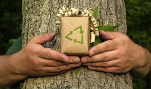 Amazing Green Packaging - A Buyers Guide 10